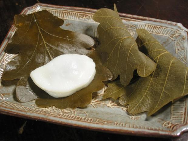 kasiwamochi