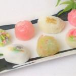 母の日生菓子セット